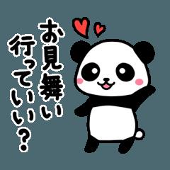 Get-well Panda
