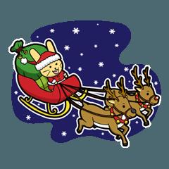 Merry Christmas & Happy New Year's !