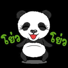 Cute Panda panda