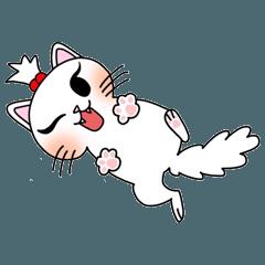 Nina cat