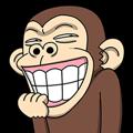 Crazy Funky Monkey3