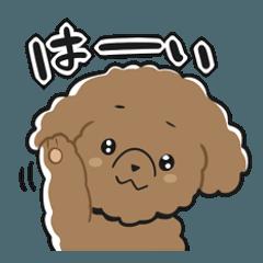 สติ๊กเกอร์ไลน์ Toy poodle-chan