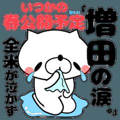 Funny Face Dog Masuda