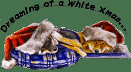 Shiba Inu Sisters and friends - 4 sticker #14536062