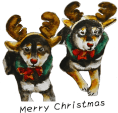 Shiba Inu Sisters and friends - 4 sticker #14536076