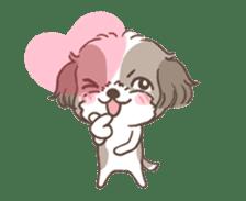 King & Bow 4 (Lovely Shih Tzu) sticker #14536705