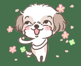 King & Bow 4 (Lovely Shih Tzu) sticker #14536707