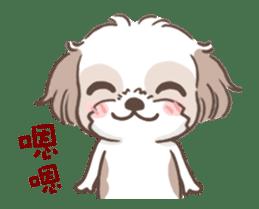 King & Bow 4 (Lovely Shih Tzu) sticker #14536708