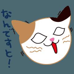 かぎしっぽの三毛猫