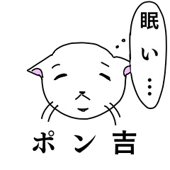 PON-KICHI, the withdrawn CAT