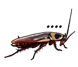 Amazing Cockroach (Eng) sticker #14625937
