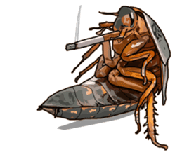 Amazing Cockroach (Eng) sticker #14625939