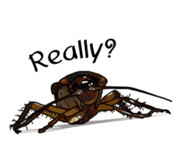 Amazing Cockroach (Eng) sticker #14625945