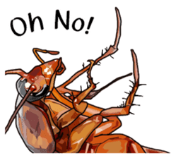Amazing Cockroach (Eng) sticker #14625947