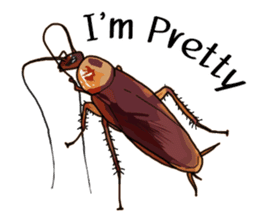 Amazing Cockroach (Eng) sticker #14625954