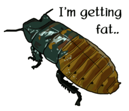 Amazing Cockroach (Eng) sticker #14625957