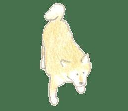 teraokas dog2 sticker #14644904