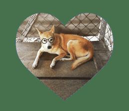 Cute Shiba Inu DOG 2 sticker #14689617