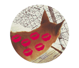 Cute Shiba Inu DOG 2 sticker #14689626