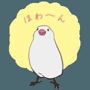 สติ๊กเกอร์ไลน์ Flighty Java Sparrow