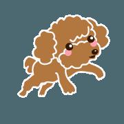 สติ๊กเกอร์ไลน์ Cute!poodle.