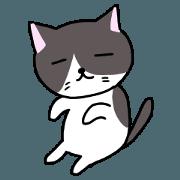 สติ๊กเกอร์ไลน์ Loose cat that can be used in everyday