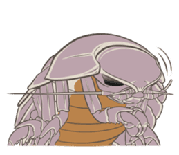 Giant isopod Stickers sticker #14729679