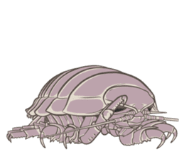 Giant isopod Stickers sticker #14729698