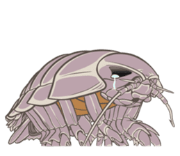 Giant isopod Stickers sticker #14729700