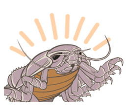 Giant isopod Stickers sticker #14729704