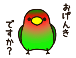Lovebird [Ver7](move/start and close) sticker #14731826