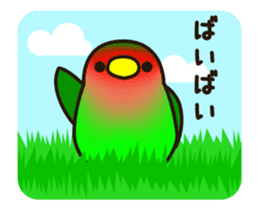 Lovebird [Ver7](move/start and close) sticker #14731835