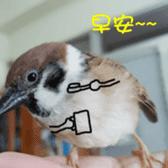 happy sparrow-doudou sticker #14758006