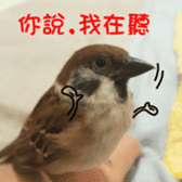 happy sparrow-doudou sticker #14758010