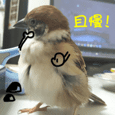 happy sparrow-doudou sticker #14758016