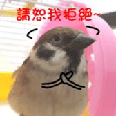 happy sparrow-doudou sticker #14758017