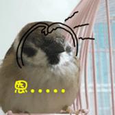 happy sparrow-doudou sticker #14758019