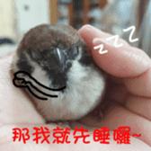 happy sparrow-doudou sticker #14758028