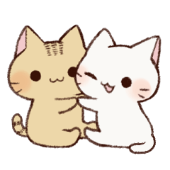 White cat & Red tabby cat