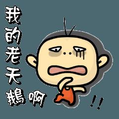 Hello,I'm Wang.