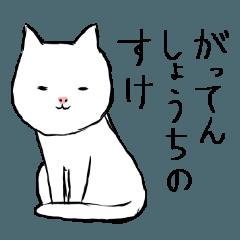 Key cat
