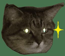 NANA Stickers Vol.3 sticker #14887728
