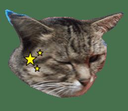 NANA Stickers Vol.3 sticker #14887735