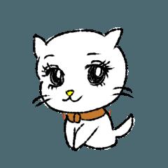 White cat,encourage.