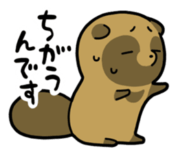 Raccoon dog & Fox 3 sticker #14894700