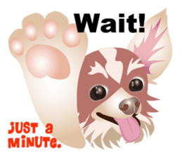 Cute Chihuahua stickers cheer you up! sticker #14922029