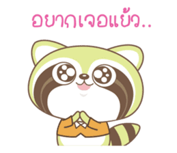 Raccoon Love sticker #14945930