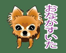 Pupu of Chihuahuas sticker #14974038