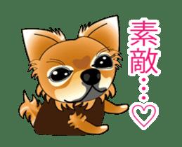 Pupu of Chihuahuas sticker #14974043