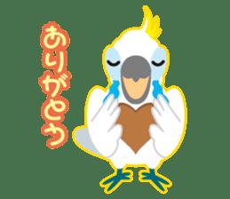 Valentine.Sulphur-Crested Cockatoo2 sticker #15026779